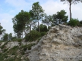 Provence_2014_20