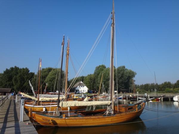 Zeesboote im Hafen von Dierhagen