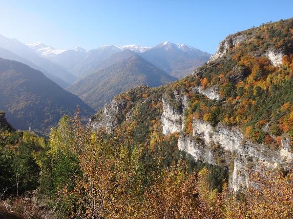 Maira-Tal   Sentiero dei Ciclamini